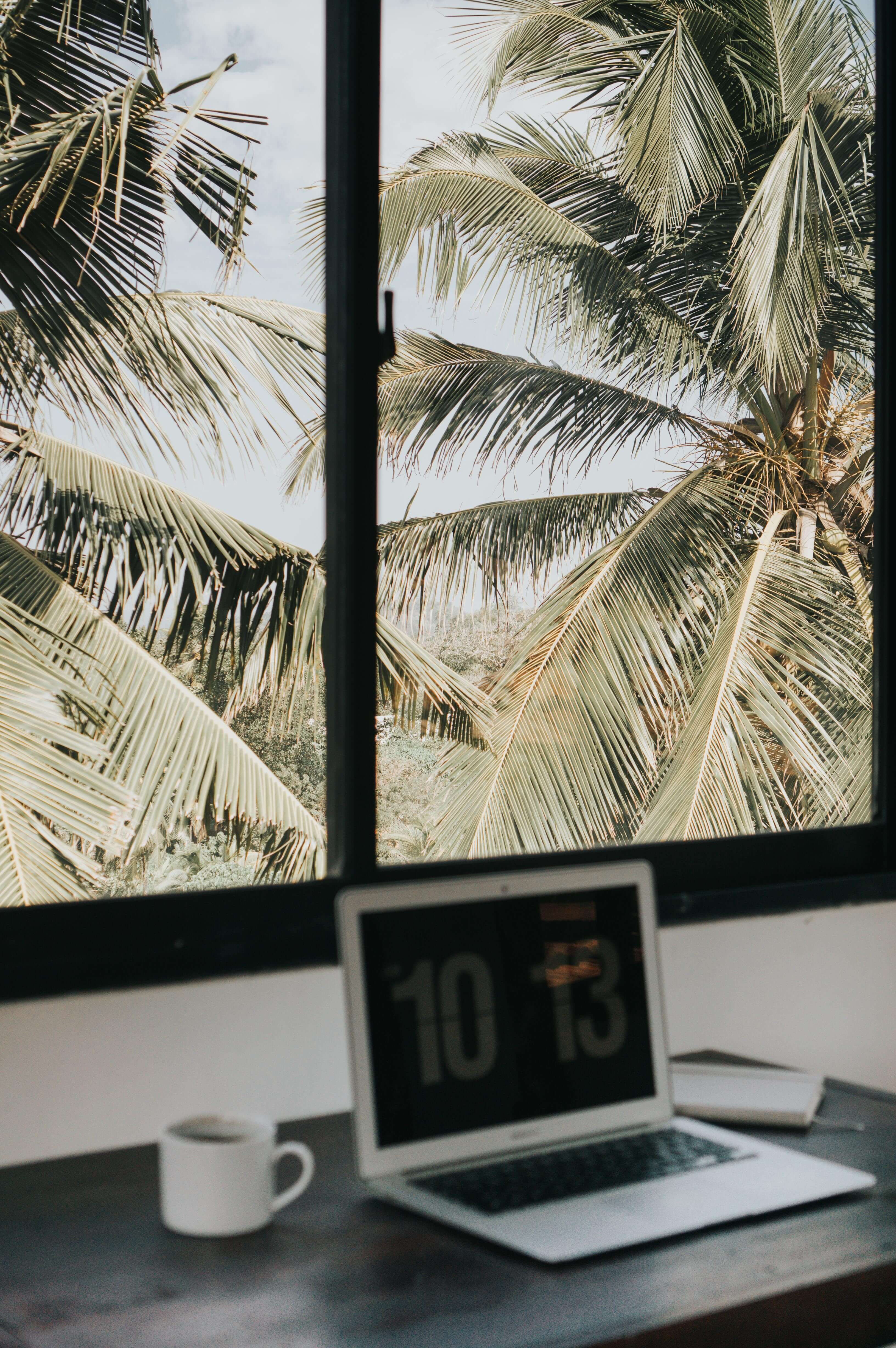 tropical-office