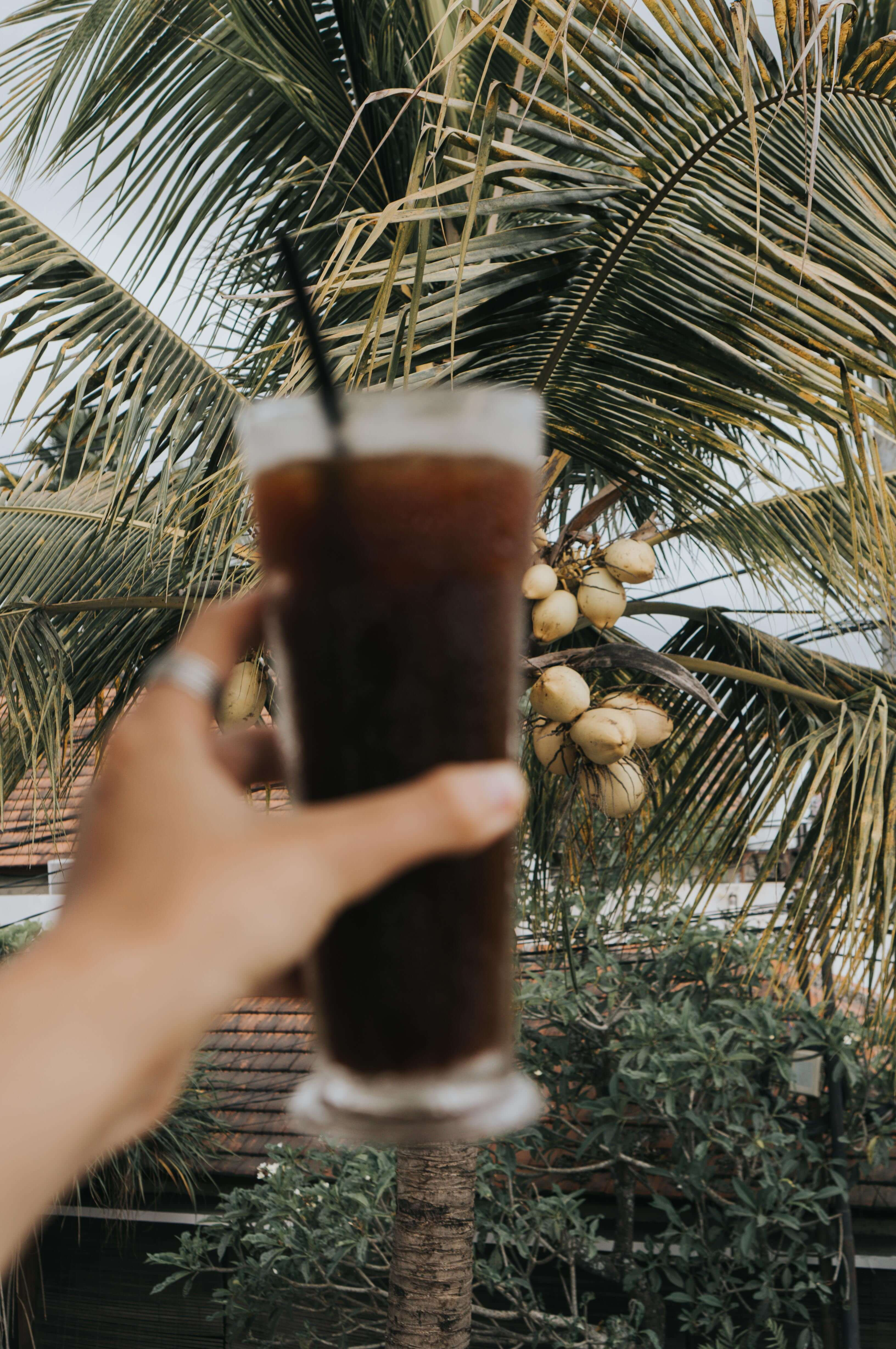 Coffee and palm trees